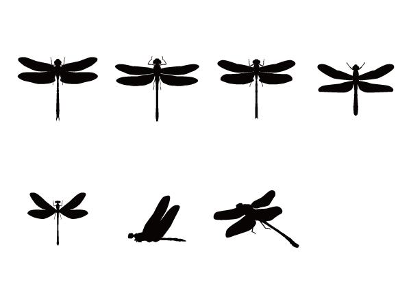 トンボのシルエット Silhouette Design